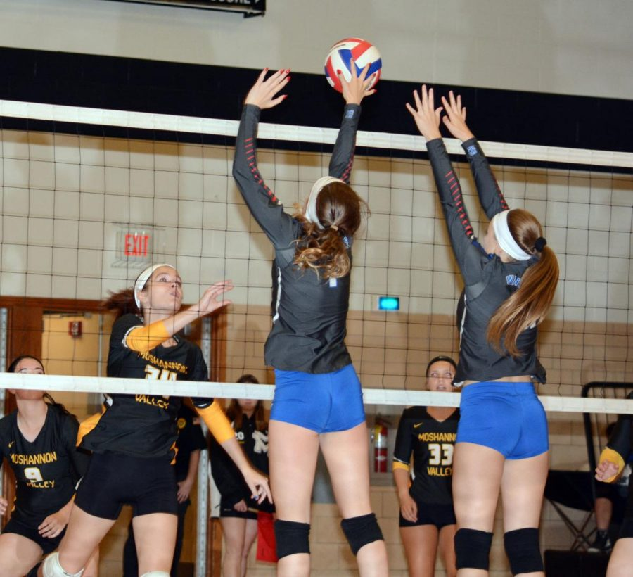 Lady Warrior Volleyball takes on the Elk County Tournament