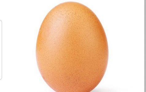 The Famous Instagram Egg