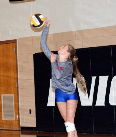 Junior Meghan Cantolina serves the ball on Tuesday night.