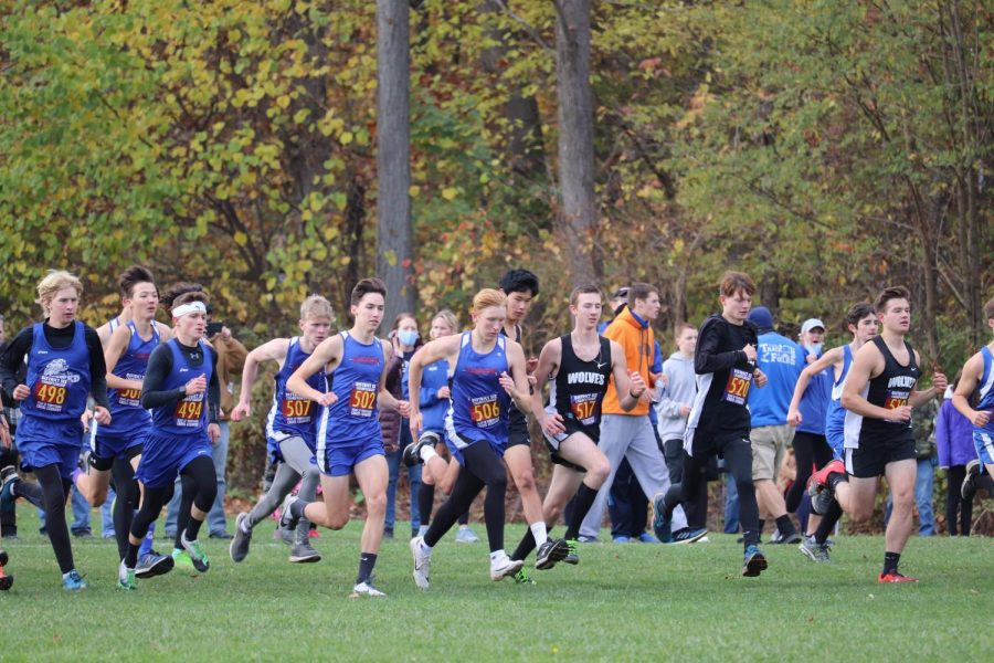 The West Branch Cross Country team races against several other school districts.