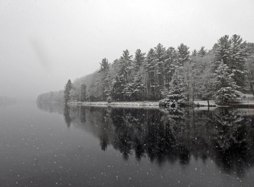 A light snow falls over Black Moshannon State Park.