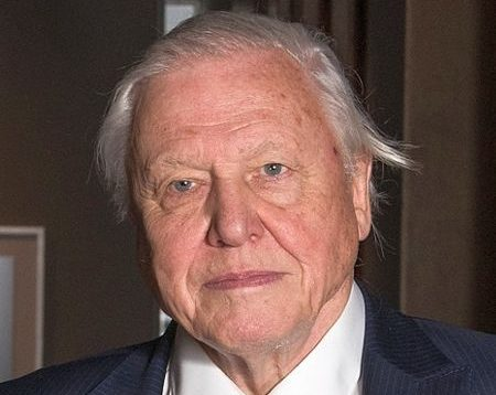 David Attenbourough, 93, known for being a English broadcaster and natural historian.