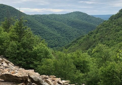 If you are looking for a place to hike, one of these trails could be for you.